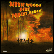 bernie woods and the forest fires cd cover